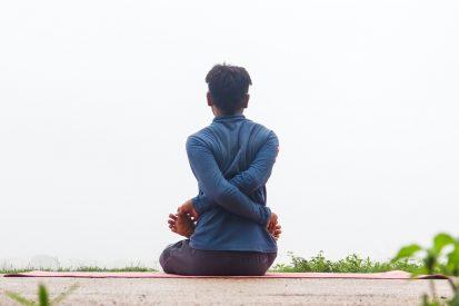 Yoga in Human Life in Hindi by Rishi Ranjan of Rishi Yoga, India